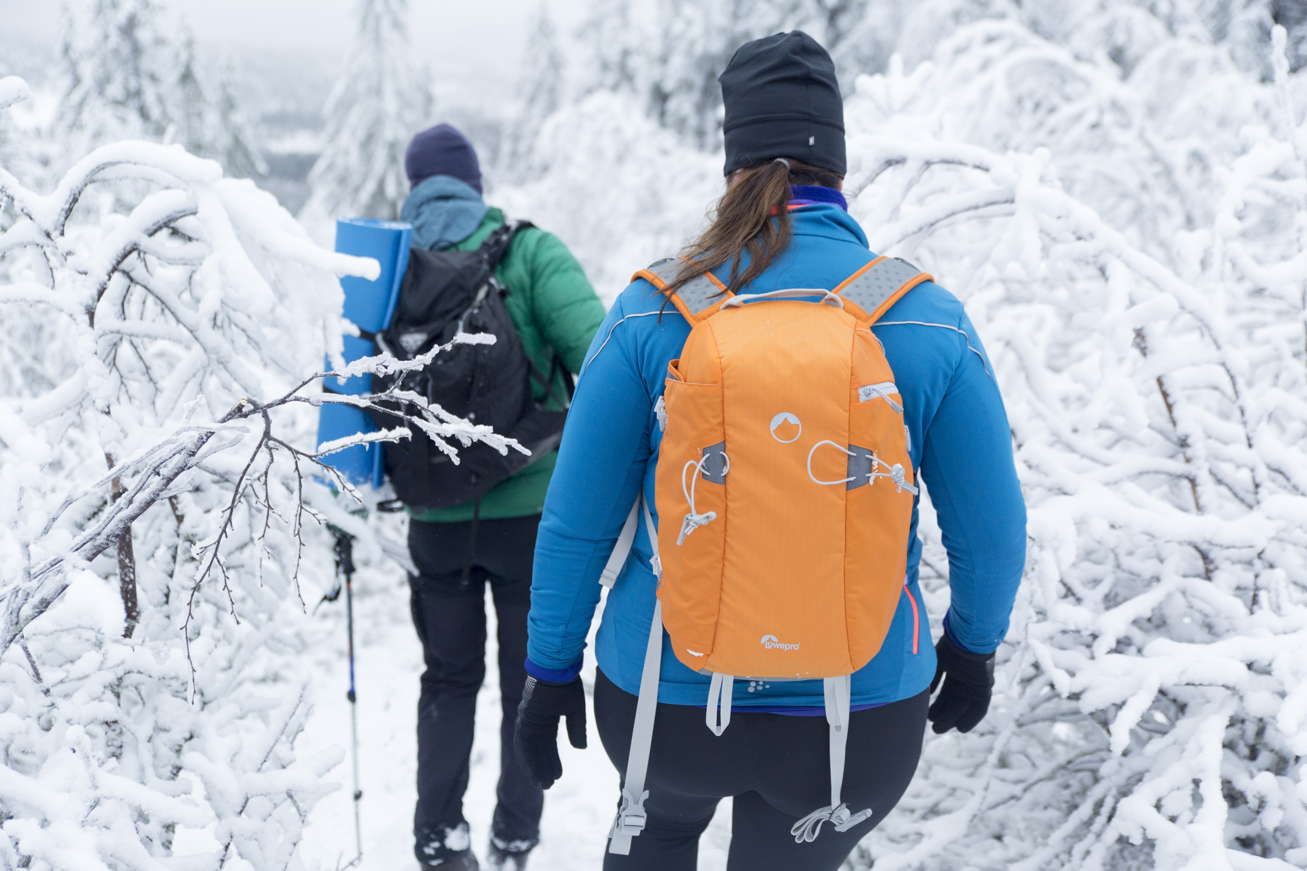 mountain-guide
