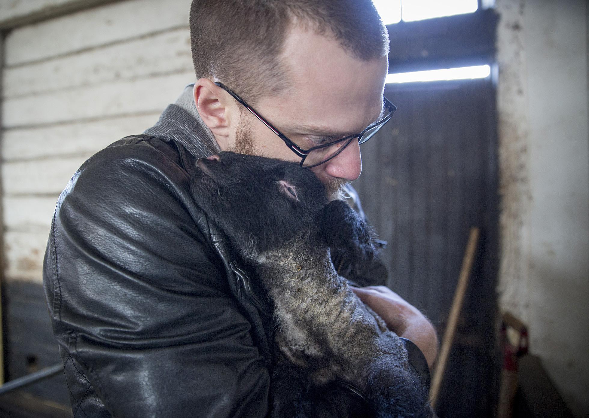 holding-lamb