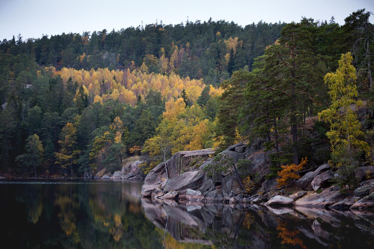 Ågelsjön-autumn