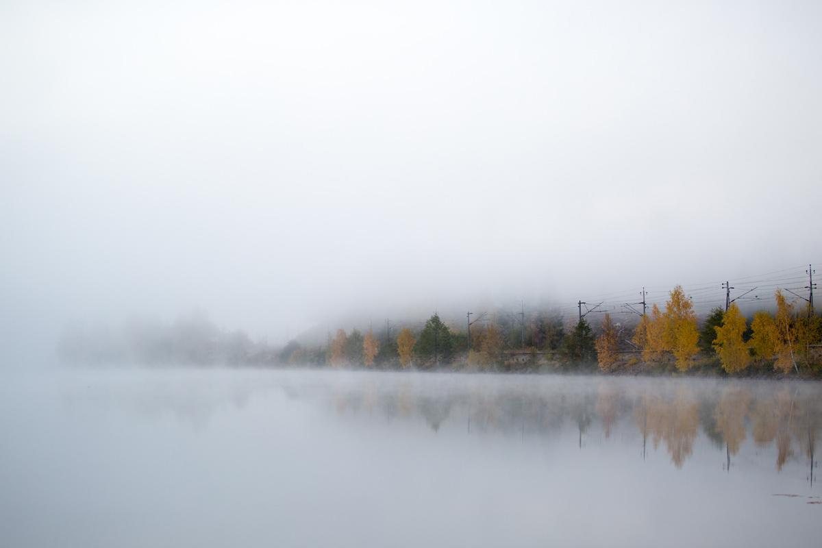 autumn-fog