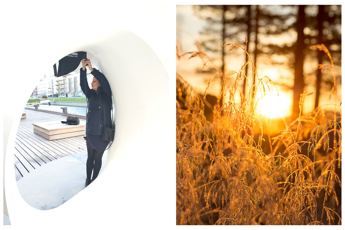 November-contrasts-2