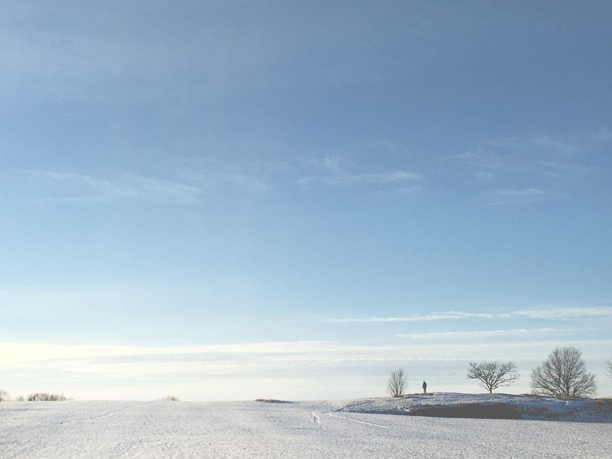 winter-minimalistic-landscape