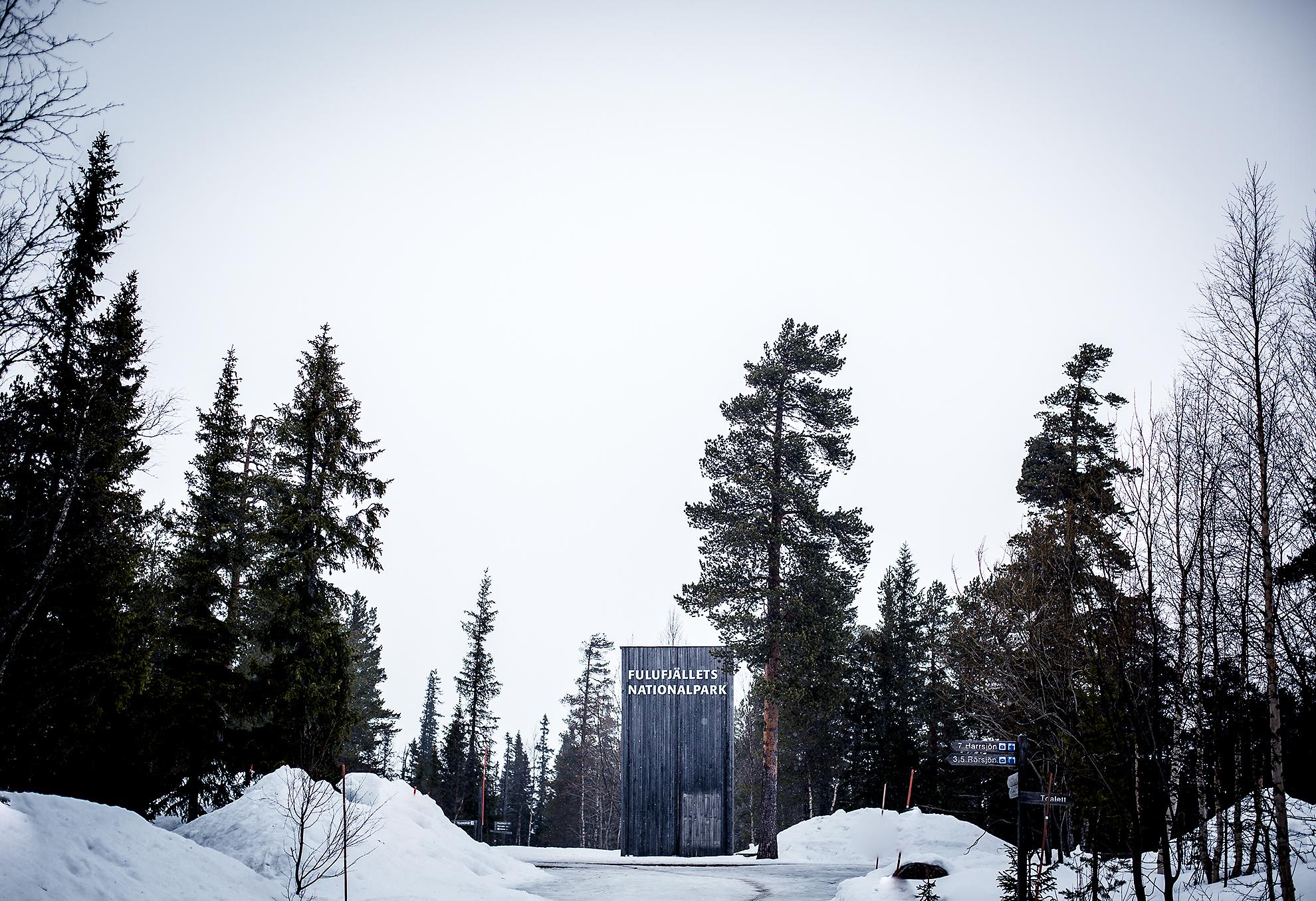 Njupeskär på vintern - Fulufjällets Nationalpark