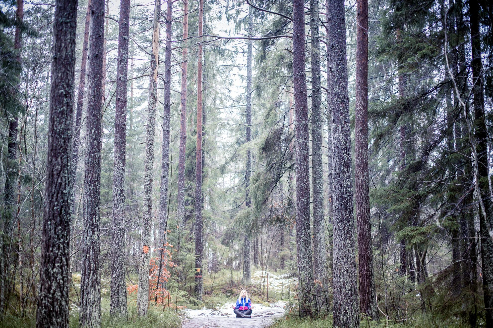 skogsyoga