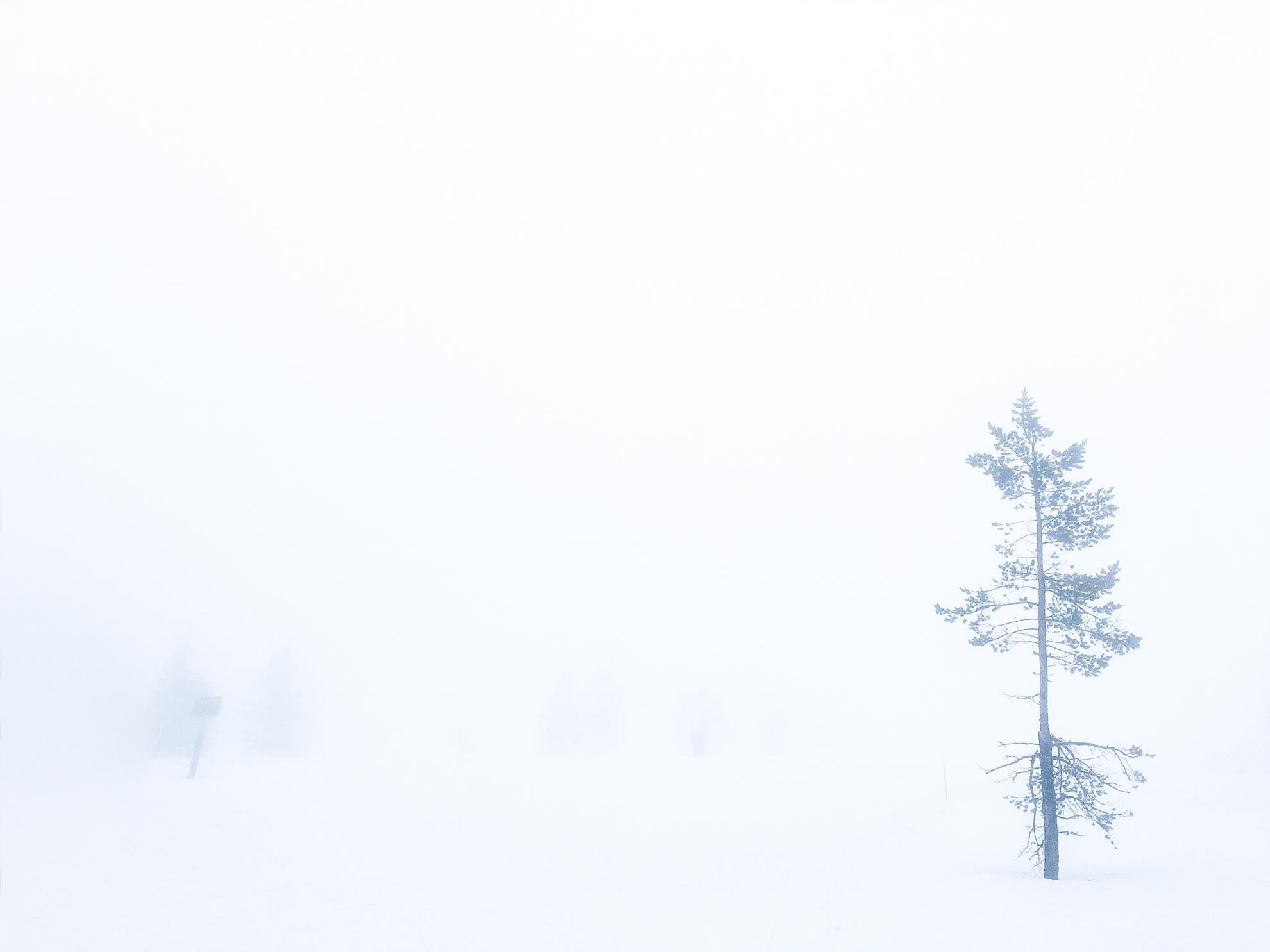 [:sv]In i dimman – en dag på Idre Fjäll[:]