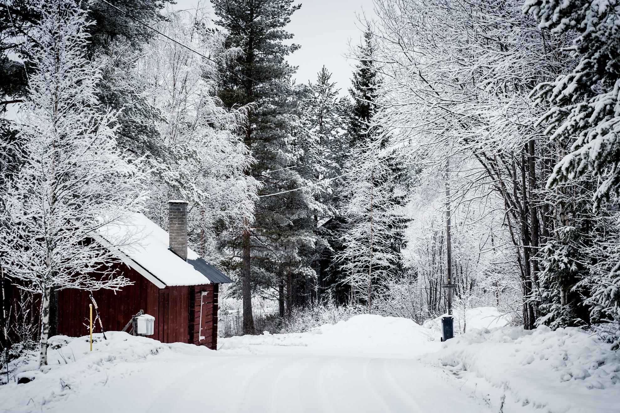 stuga-vinter