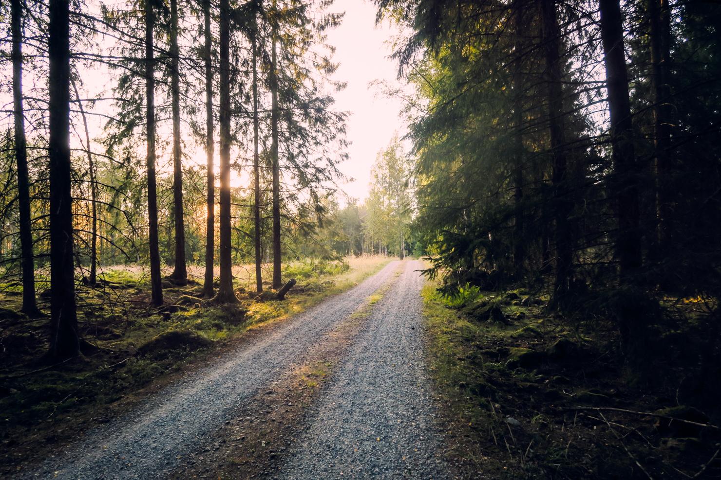 [:sv]Vägen till en vardag just för mig[:]
