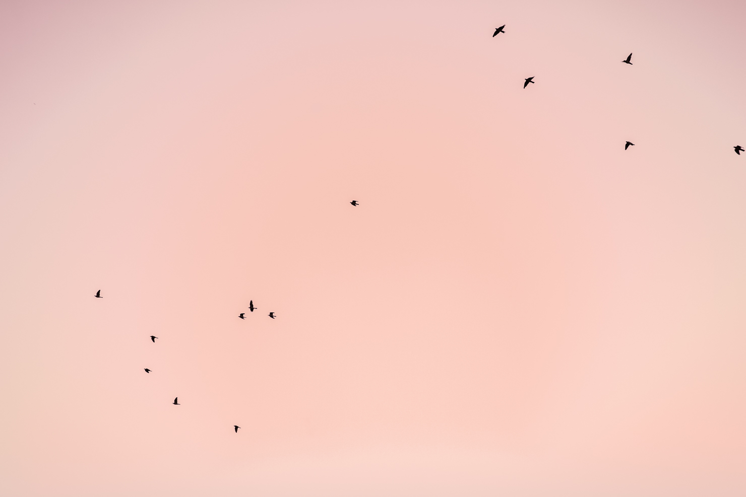 sunrise-norrkoping7