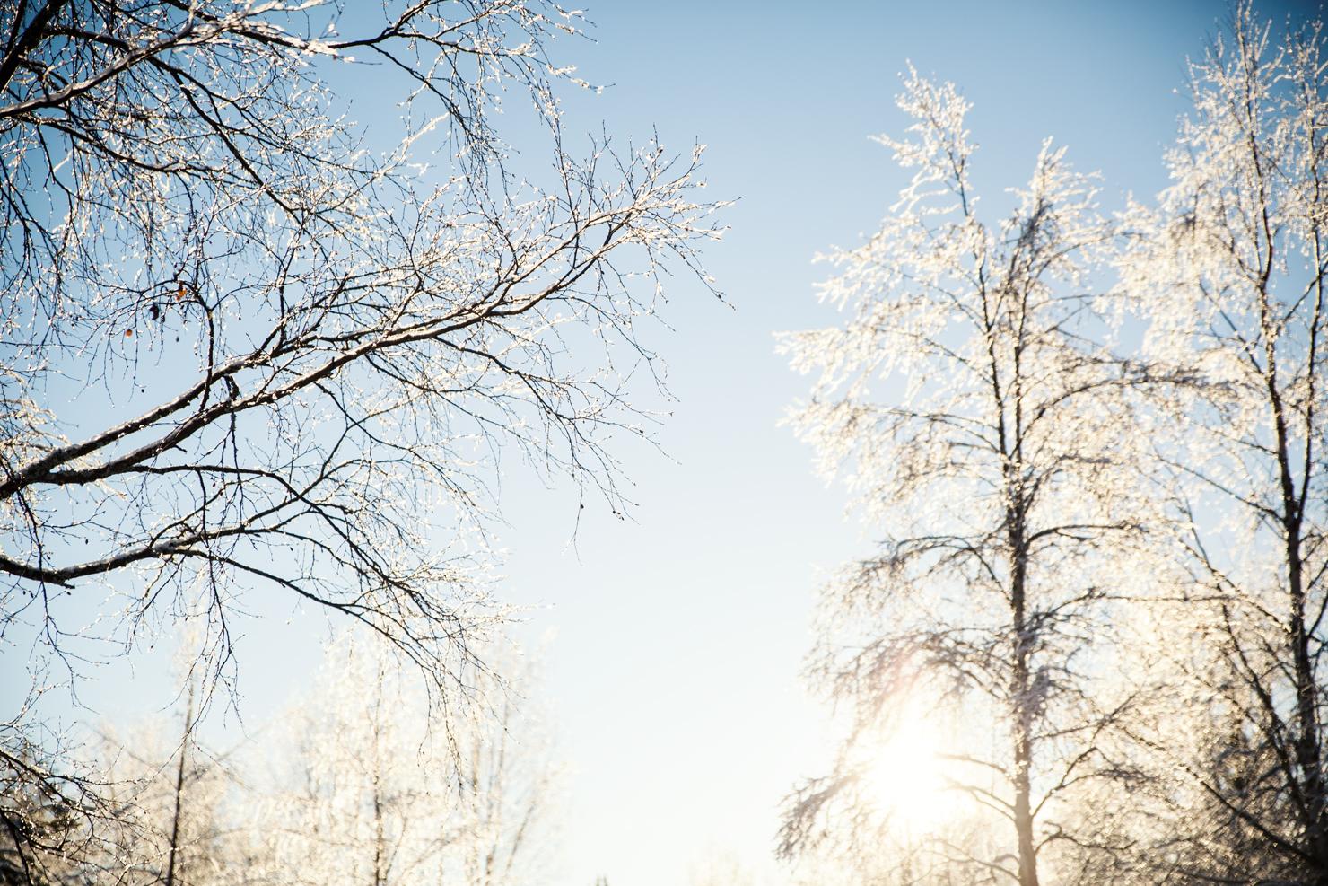 Badrum, vedklyvning och vinterparadis