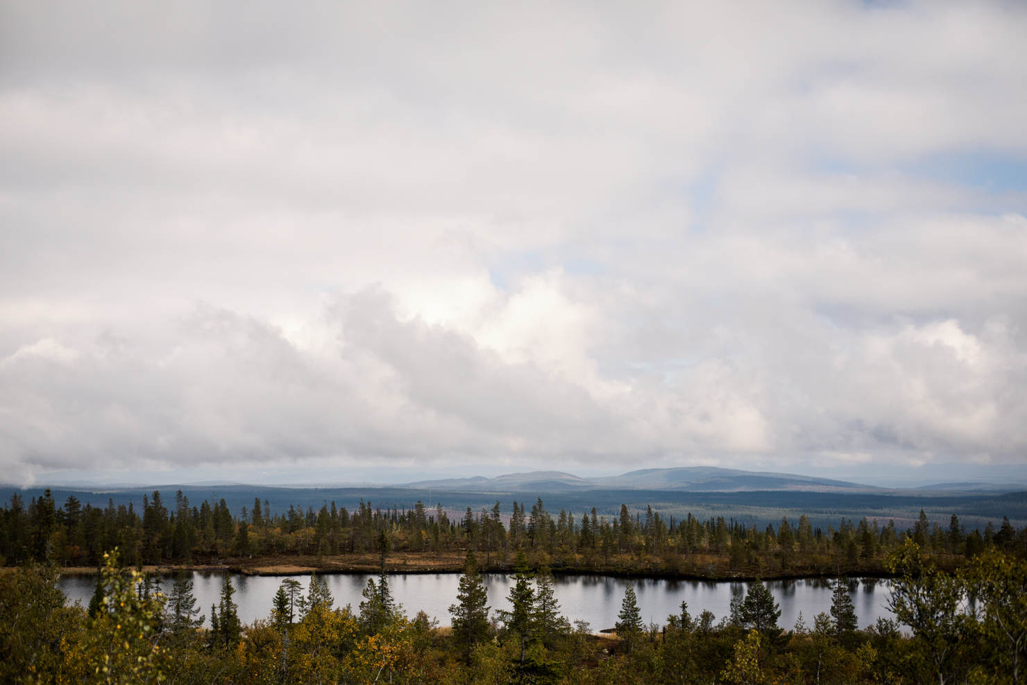Utsikten en dag i skog och fjäll