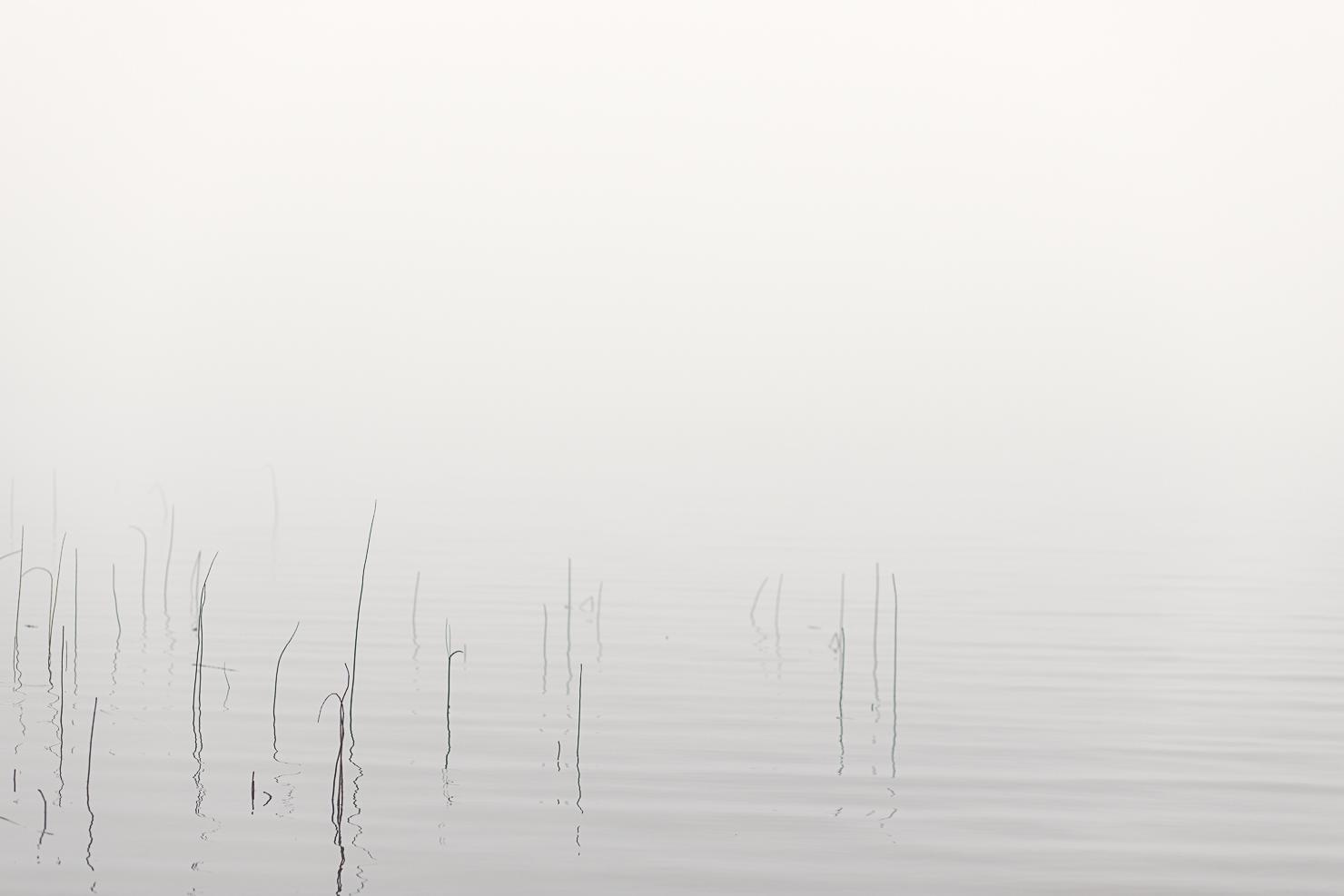 Morgondimma över Särnsjön