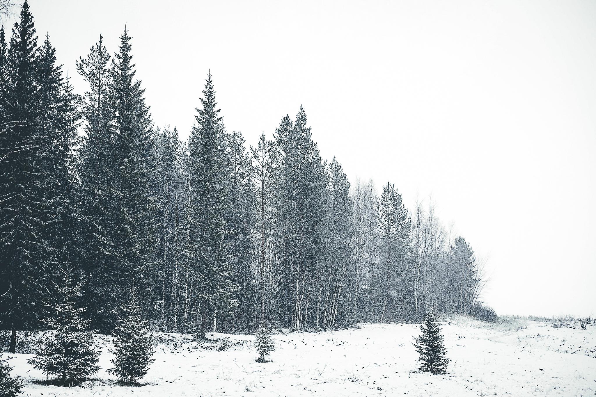 När snön kom till byn
