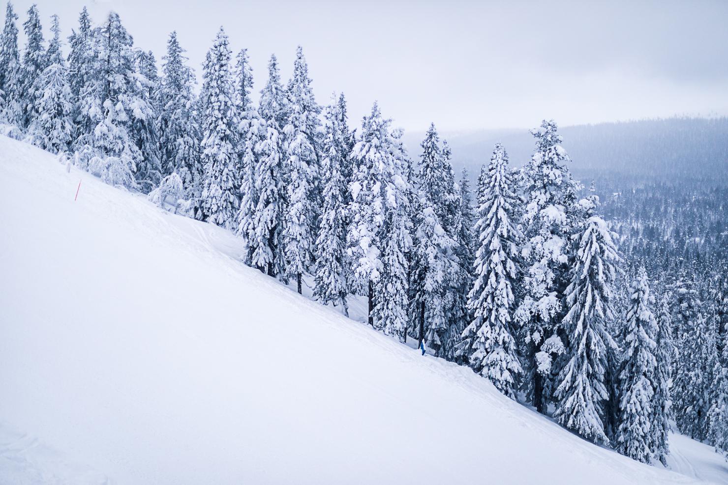 Alpin premiär på Idre Fjäll