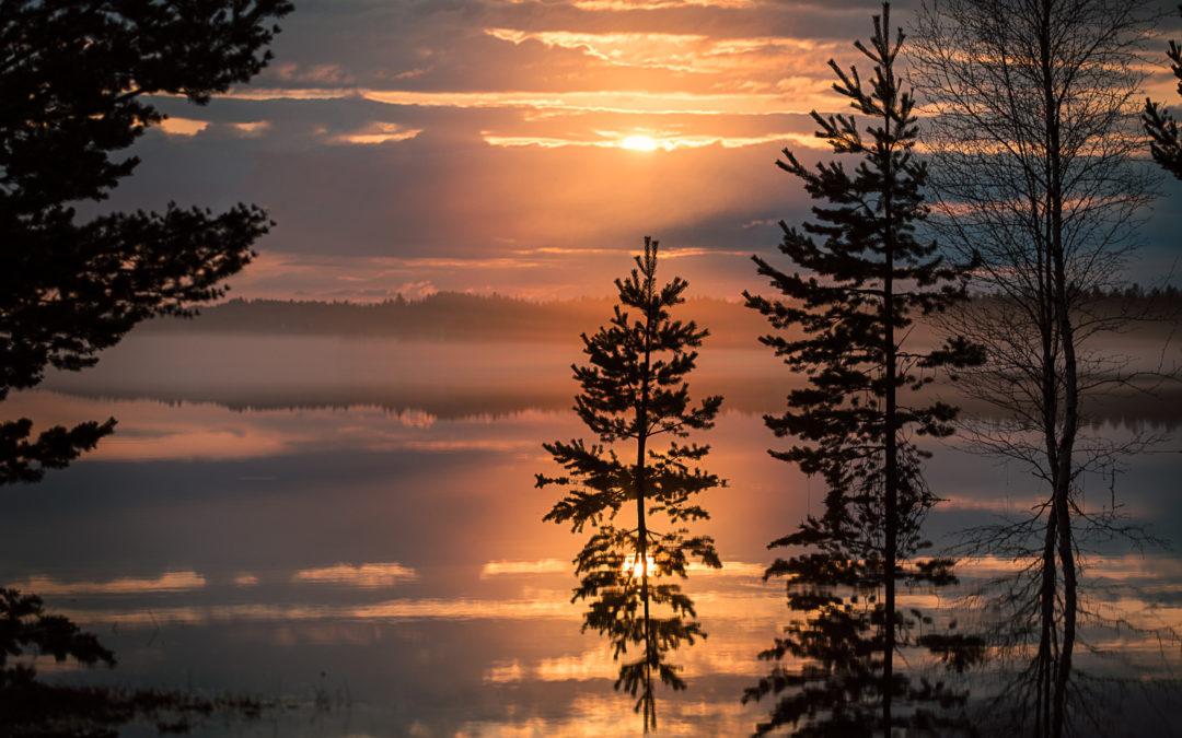 Särnsjön och dimman