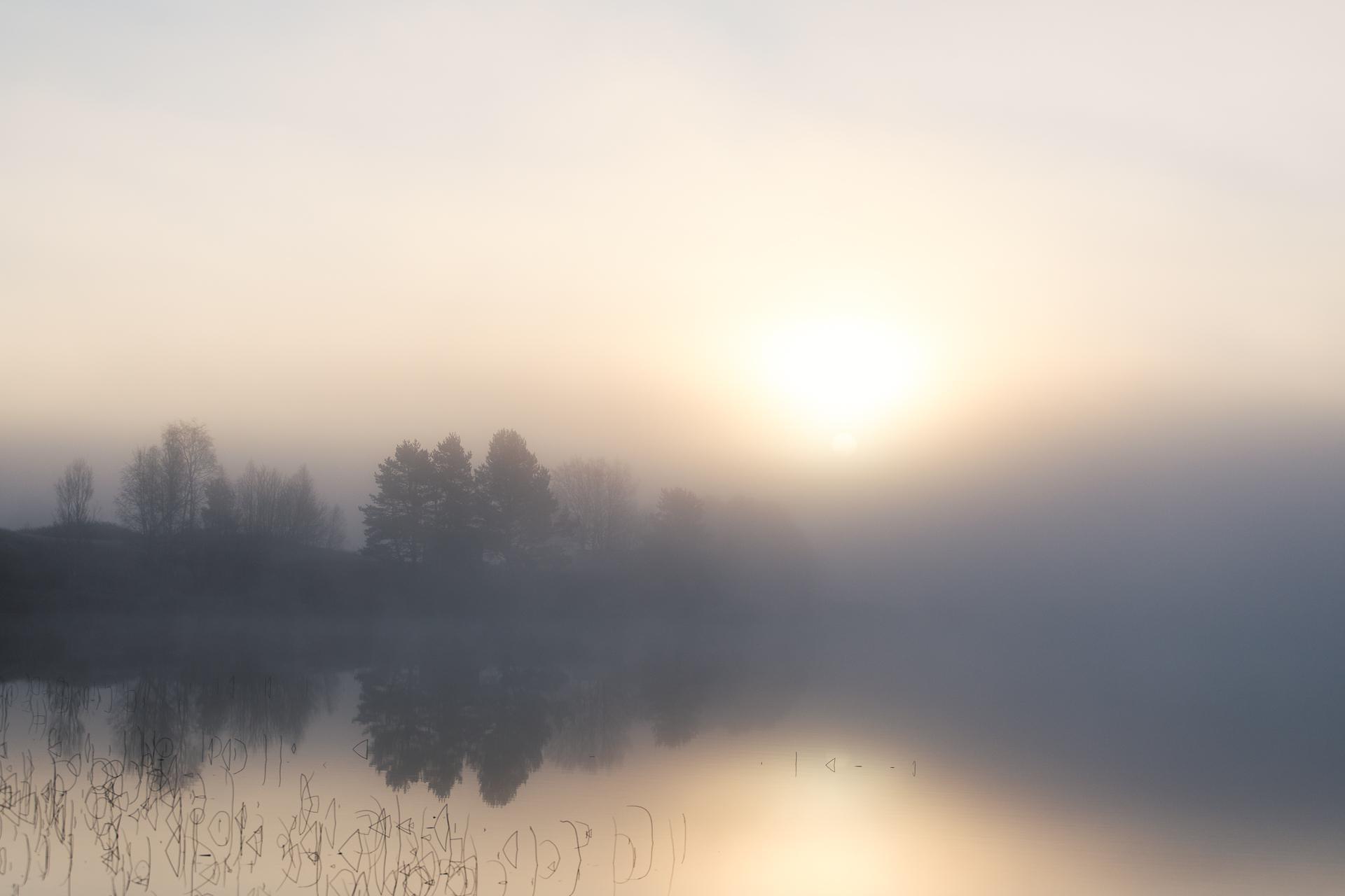 Morgon vid Särnsjön