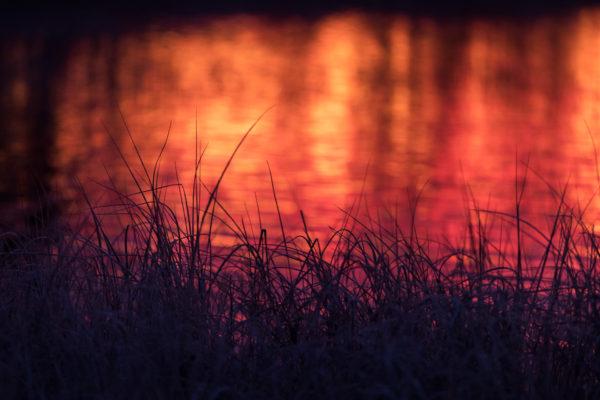 Två världar, en plats – morgon vid Särnsjön