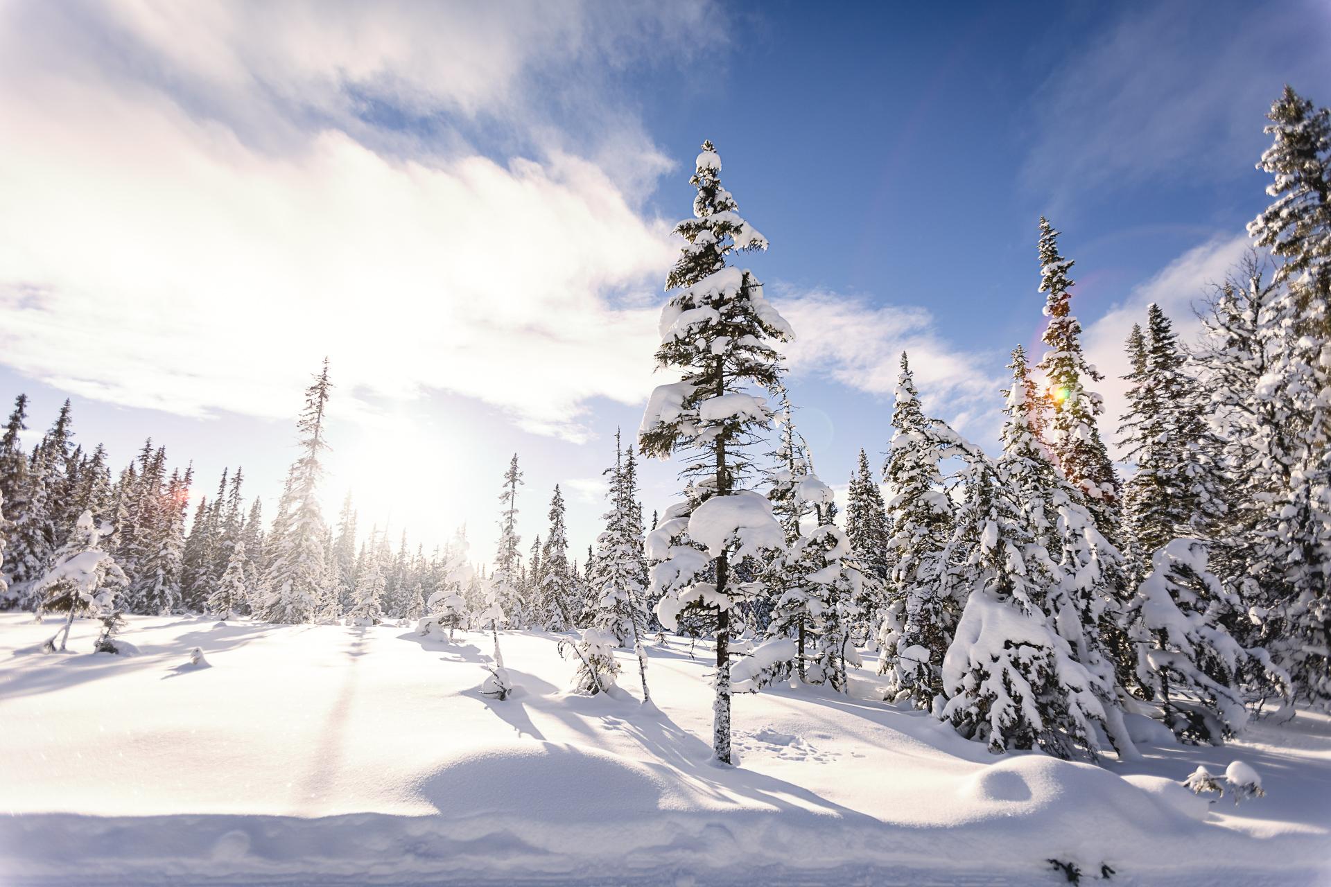 Vinter i Grövelsjön